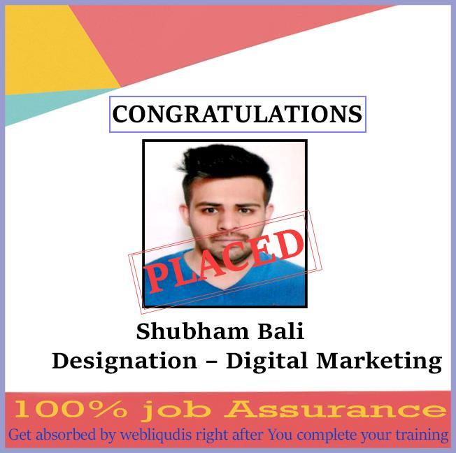 digital marketing training course - webliquidinfotech
