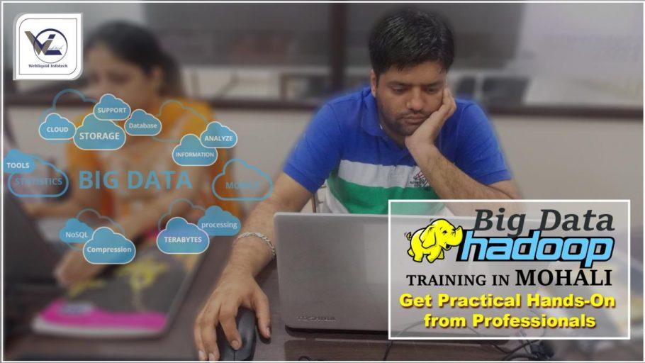 Big Data Hadoop Training in Mohali - Webliquidinfotech