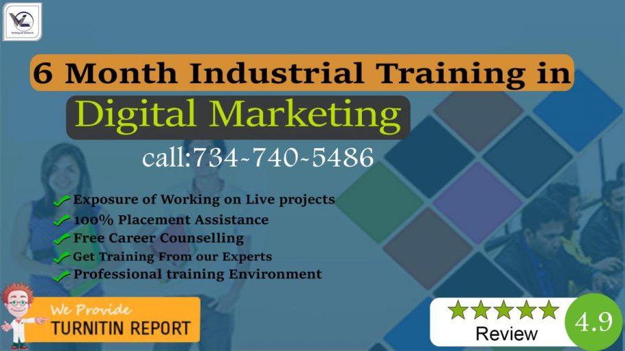 6/Six Months Digital Marketing Industrial Training in Chandigarh - Webliquidinfotech