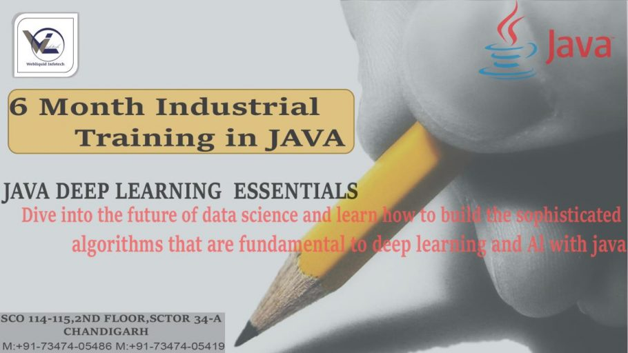 6/six Months JAVA Industrial Training in Chandigarh - Webliquidinfotech