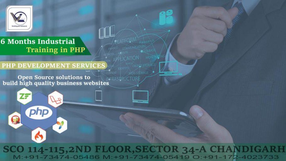 6 Months PHP Industrial Training in Chandigarh - Webliquidinfotech