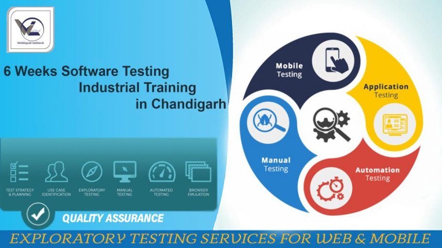 6 Weeks Software Testing Industrial Training in Chandigarh - Webliquidinfotech