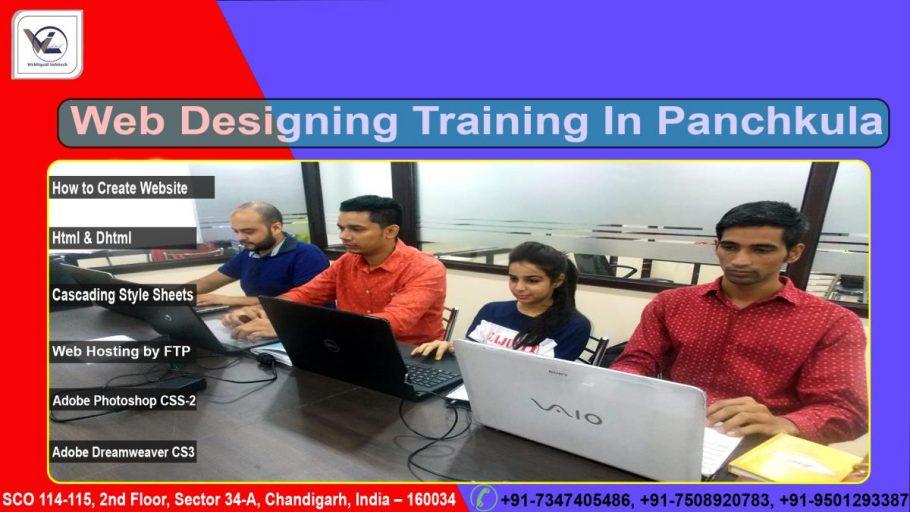 web Designing in panchkula - webliquidinfotech