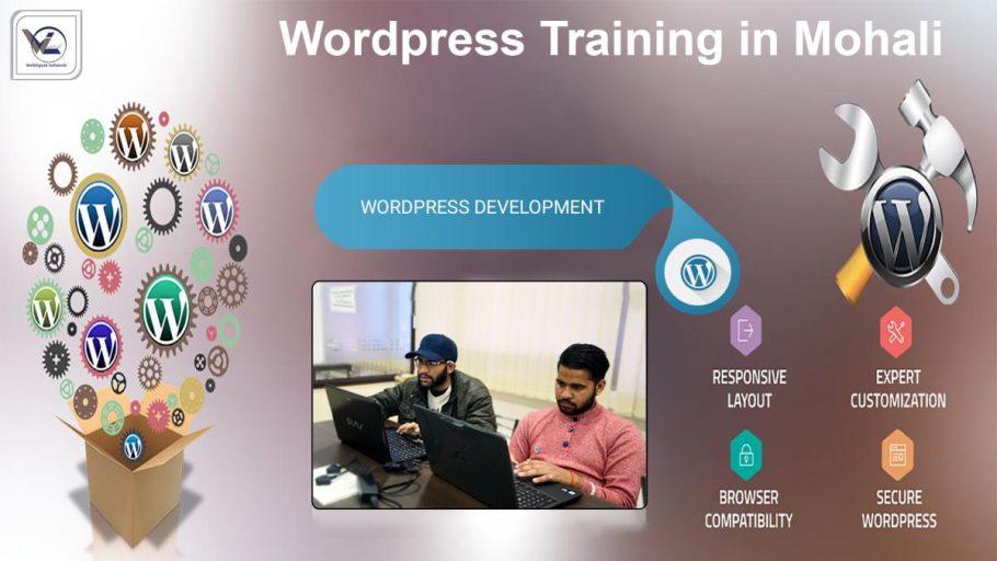 WordPress Training in Mohali - Webliquidinfotech