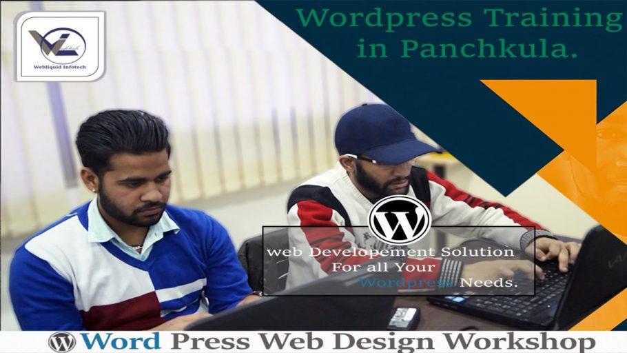 WordPress Training in Panchkula - Webliquidinfotech