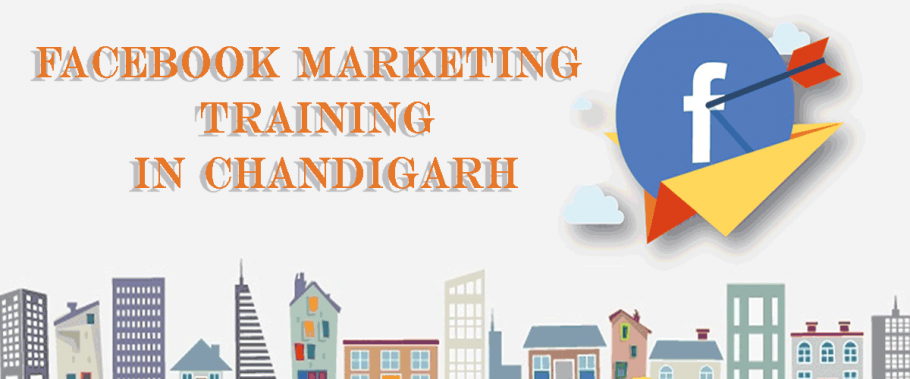 Facebook Marketing Training in Chandigarh