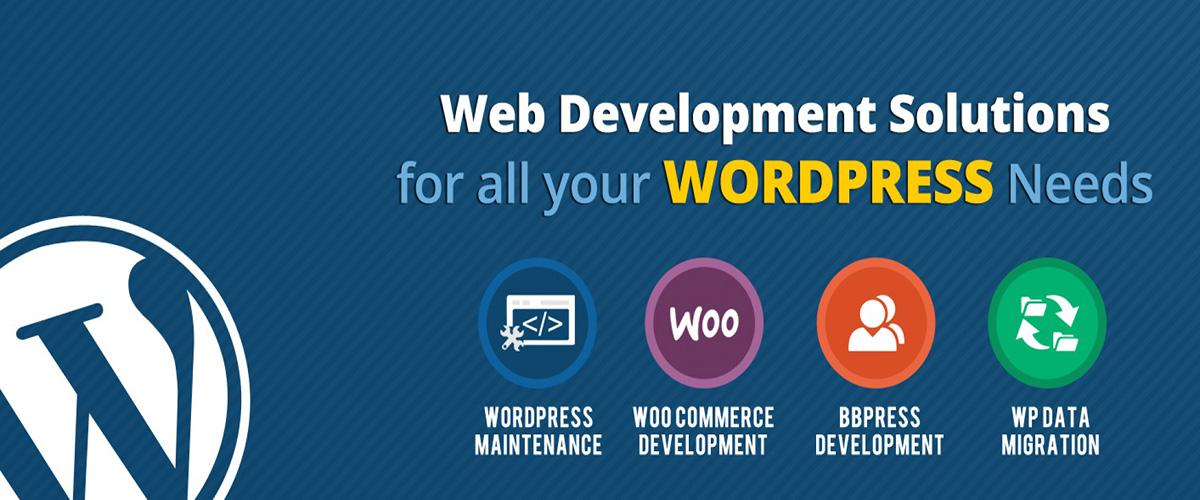 wordpress training -Webliquidinfotech