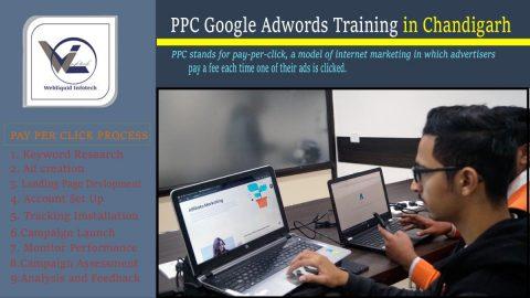 PPC Google Adwords Training In Chandigarh - Webliquidinfotech