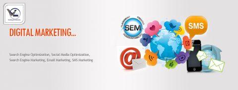 digital marketing course - Webliquidinfotech