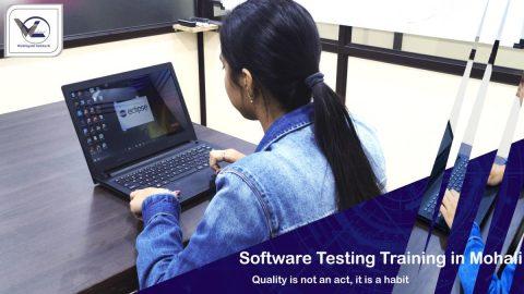 Software Testing Training in Mohali - Webliquidinfotech